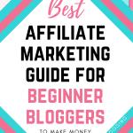 best affiliate marketing guide for beginner bloggers