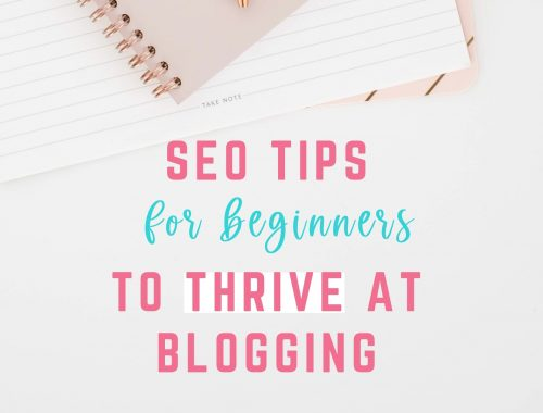 seo tips for beginners to thrive at blogging