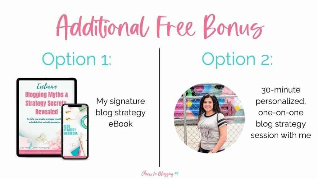 free bonus for purchasing the genius bloggers toolkit